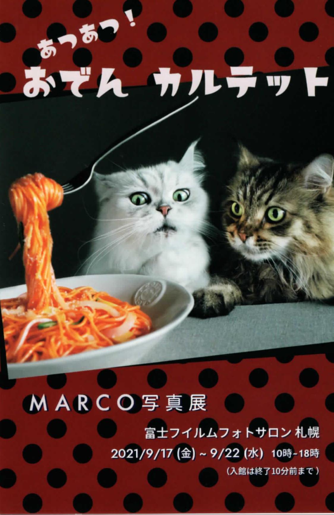 MARCO写真展:あつあつ!おでんカルテット イメージ画像